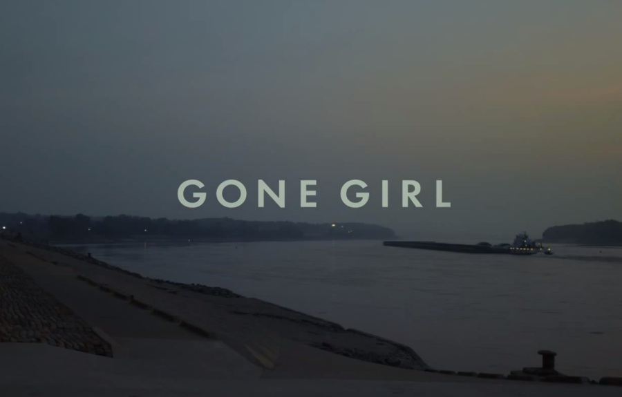 """""""Gone Girl"""" and Feminism (Part1)"""